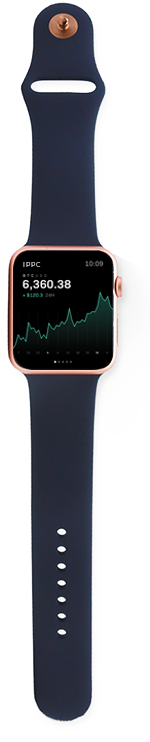 Apple Watch - Stock App